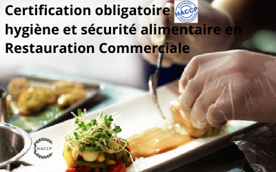 HACCP Certification DRAAF Restauration Commerciale, Commerces alimentaires